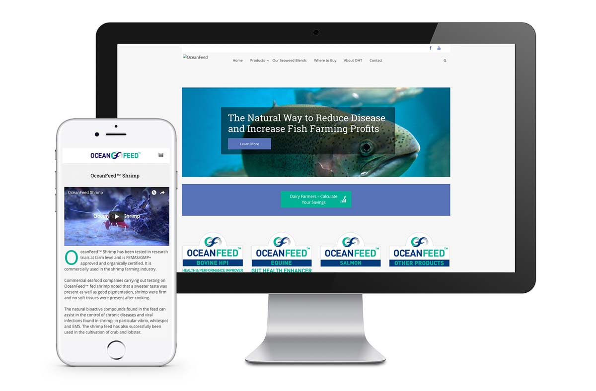 website project for galway company mockups